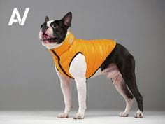 Jacket for Dog Airy Vest - Kurtka dla psa Roz. S-30